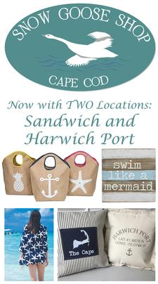 NOW IN SANDWICH AND HARWICHPORT - Snow Goose Shop is offering $20 to spend, for only $10