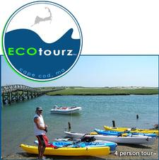 60% OFF a 4-person Kayak Tour with ECOtourz in Sandwich