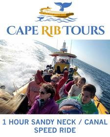 Cape Rib Tours is offering a 1-Hour Sandy Neck / Canal Speed Ride for 20% OFF