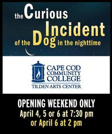 30% OFF General Admission Opening Weekend Tickets to The Curious Incident of the Dog in the Night-Time at Tilden Arts Center in West Barnstable