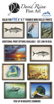 David Riina Fine Art is offering Five(5) 5 x 7 inch Framed Mini Giclee Prints for only $75